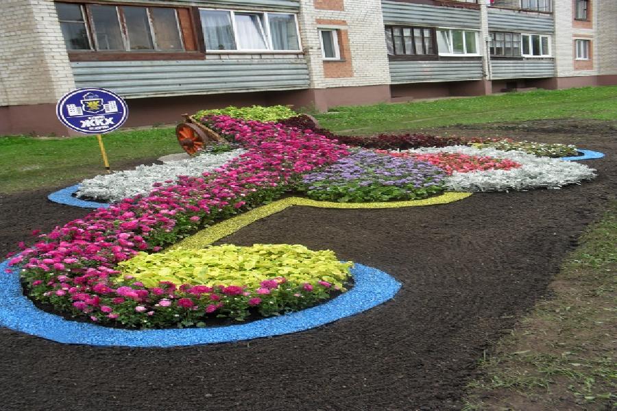 2012 год г.Каменец - Диплом первой степени по второй группе, конкурс профессионального мастерства среди рабочих зеленого строительства «Беловежская цветочная сказка «Каменец 2012»